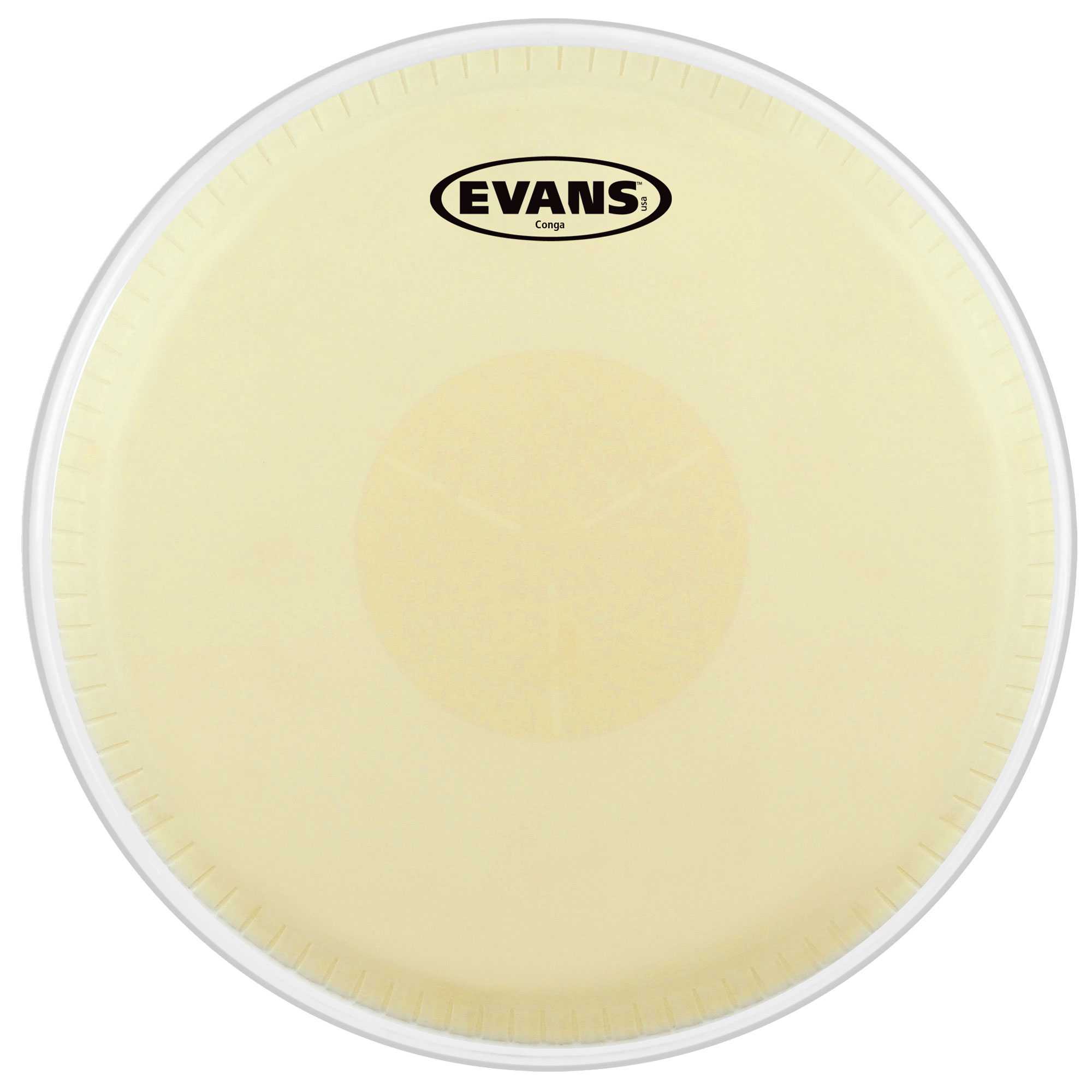 "Evans 11.75"" Tri-Center Conga Head"