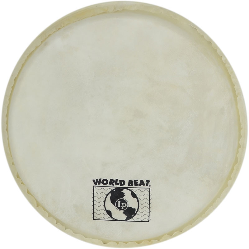 "Replacement Head for 12"" World Beat Drum"